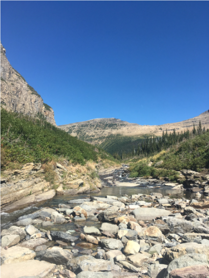 siyeh creek 2