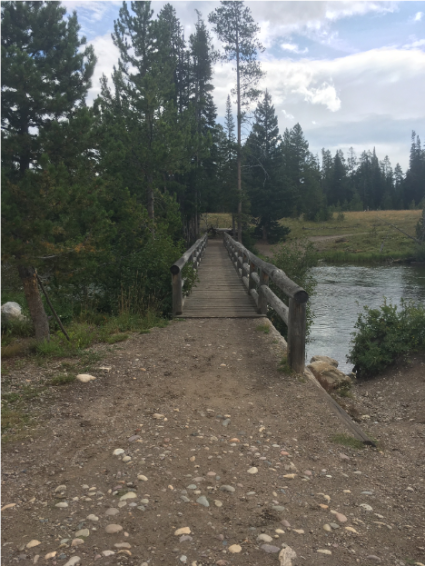 Bridge across Jenny Lake outlet