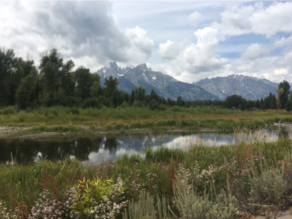 View of the mountains from Schwabacher Landing