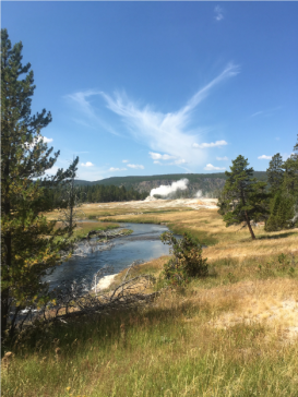 Castle Geyser errupting in the distance