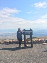 Mt Wasburn, Yellowstone National Park, WY