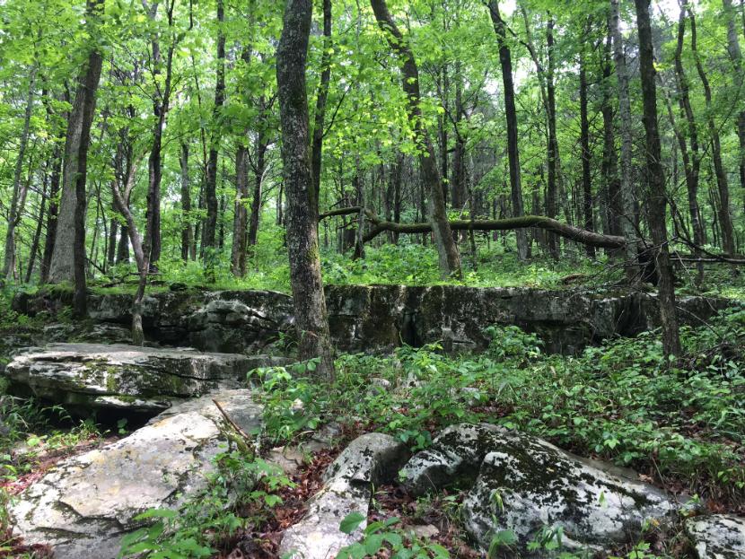 mammoth cave hike