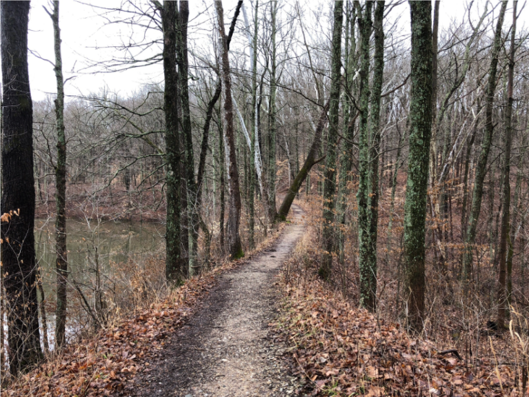 lusk earth fill trail 2