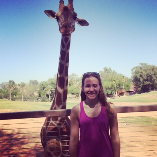 Feed giraffes at the Phoenix Zoo